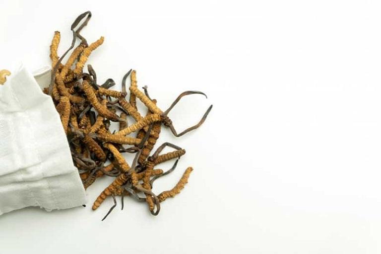 Không dùng đồ dùng kim loại trong chế biến đông trùng hạ thảo