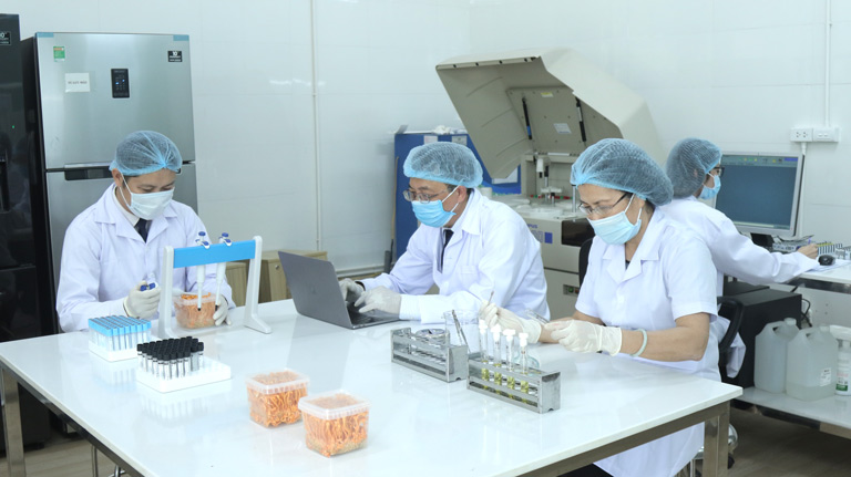 Đông trùng hạ thảo Vietfarm được nghiên cứu và nuôi cấy bởi hội đồng chuyên môn cấp cao