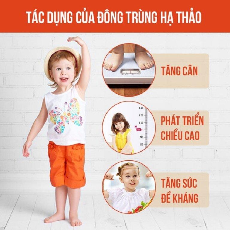 Tác dụng của đông trùng hạ thảo với trẻ em là rất tốt