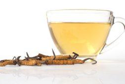 7 cách ăn đông trùng hạ thảo cho hiệu quả tốt nhất