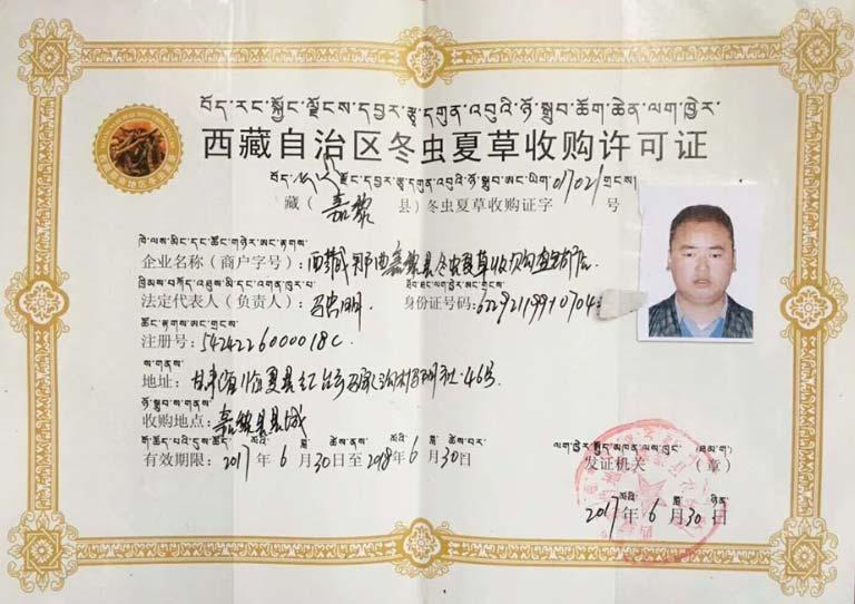 giấy chứng nhận thu mua đông trùng hạ thảo tây tạng