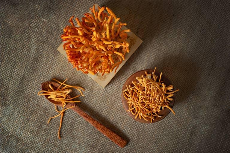 Đông trùng hạ thảo Việt Nam dạng khô