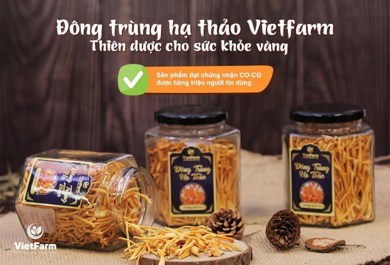 Đông trùng hạ thảo Vietfarm được nhiều người chọn làm quà trong các dịp quan trọng