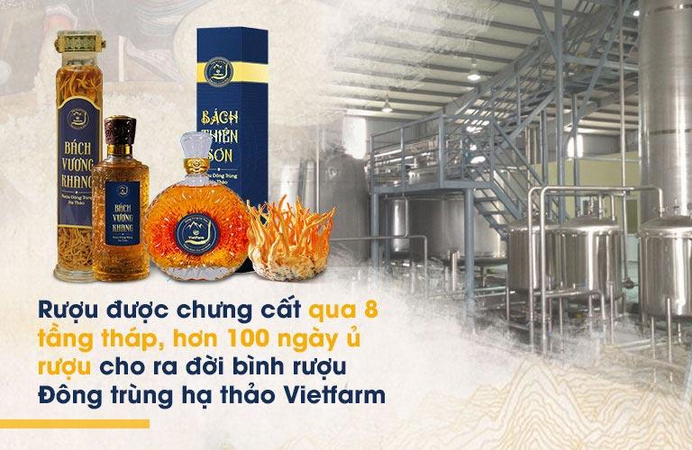 Quy trình sản xuất rượu đông trùng hạ thảo Vietfarm khép kín, tân tiến, đạt chuẩn