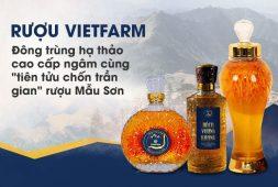 7 lý do khẳng định rượu đông trùng hạ thảo Vietfarm là sản phẩm chất lượng hàng đầu hiện nay