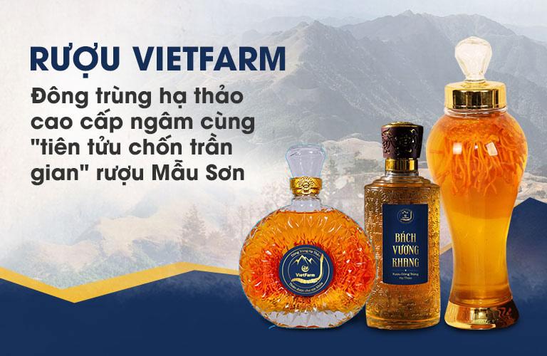 """Rượu đông trùng hạ thảo Vietfarm thượng hạng """"nếm một lần lỡ say một đời"""""""