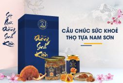 Set quà Dưỡng Sinh Kiện từ Đông trùng hạ thảo Vietfarm - Thay bạn chăm sóc sức khoẻ người thân yêu nhất