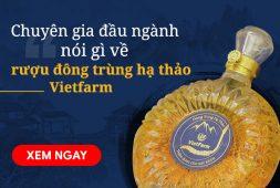 Chuyên gia đầu ngành nói gì về rượu đông trùng hạ thảo Vietfarm?