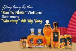 """Đông trùng hạ thảo Vietfarm sánh ngang """"sâu vàng Tây Tạng"""", giá thành song hành chất lượng"""